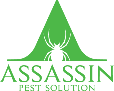 Assassin Pest Solution